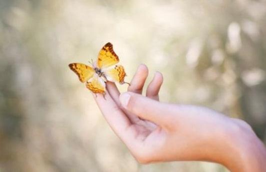 «Когда вы всё отпускаете, к вам приходит самое лучшее» — Семь советов Шри Шанкара наполняющие оптимизмом
