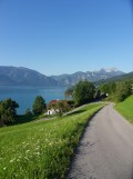 Am Attersee (5)