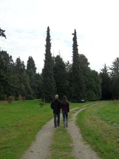 Arboretum Chèvreloup (13)