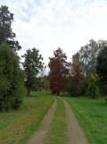 Arboretum Chèvreloup (22)