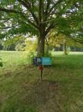 Arboretum Chèvreloup (3)