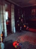 Skansen museet (89)