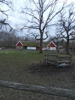 Skansen museet (99)