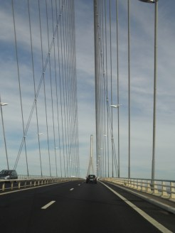 Pont de Normandie (7)