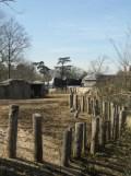 Zoo de Vincennes (153)