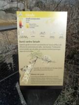 Zoo de Vincennes (217)