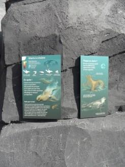 Zoo de Vincennes (27)
