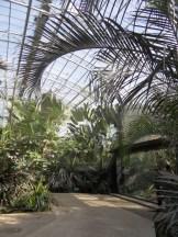Zoo de Vincennes (308)