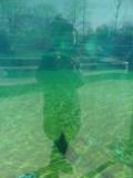 Zoo de Vincennes (31)