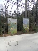 Zoo de Vincennes (397)