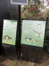 Zoo de Vincennes (399)