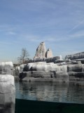 Zoo de Vincennes (44)