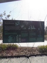 Zoo de Vincennes (86)