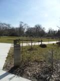 Zoo de Vincennes (96)