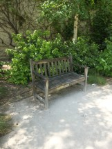 2.Jardin des Rosiers (7)