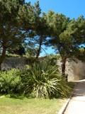 Citadelle de Belle Île en Mer (128)