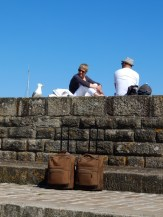 De Belle Île à Vannes en bateau ! (11)