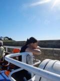 De Belle Île à Vannes en bateau ! (27)