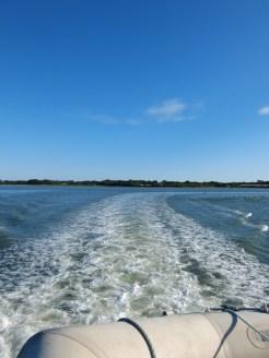 De Belle Île à Vannes en bateau ! (49)