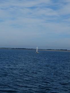 Vers Belle Île en Mer (18)