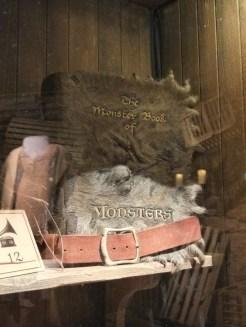 L'exposition Harry Potter (67)