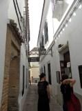 2. Sinagoga (24)