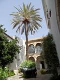 2. Sinagoga (35)