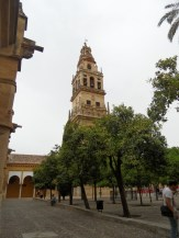3.Catédral de Córdoba (6)
