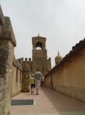 Alcázar de los Reyes Cristianos (186)