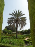 Alcázar de los Reyes Cristianos (50)