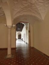 Museo de Bellas Artes (19)
