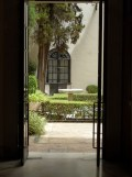 Museo de Bellas Artes (22)