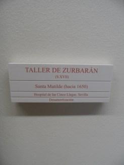 Museo de Bellas Artes (220)