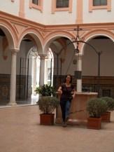 Museo de Bellas Artes (6)