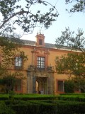 Real Alcázar de Sevilla (247)