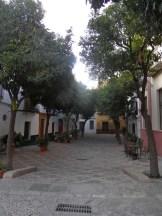 Sevilla by night (7)