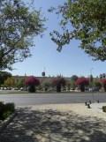 vers la Plaza de España (89)
