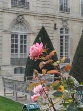 Musée Rodin (13)