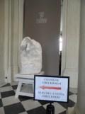 Musée Rodin (32)