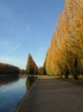 Parc de Sceaux (14)