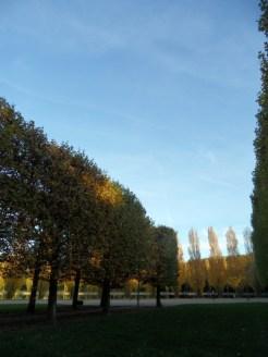 Parc de Sceaux (31)