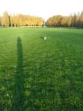Parc de Sceaux (34)