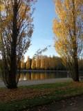 Parc de Sceaux (8)
