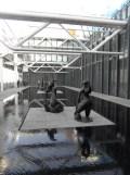 1. Art moderne - Pompidou (66)