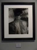 Herb Ritts - Variants (64)