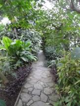 Jardin des serres d'Auteuil (97)