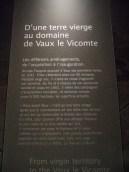 Noël à Vaux le Vicomte (129)