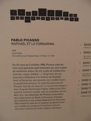 Picassomania! (168)