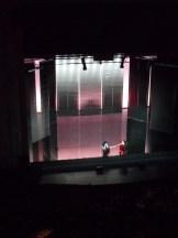 Théâtre des Champs Élysées (61)