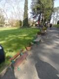 Jardin des Plantes - Nantes et retour (1)